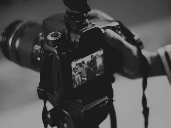 Darmowe zdjęcia - skąd brać zdjęcia na stronę lub blog ? 2