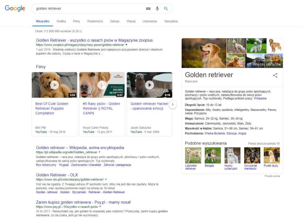 Wyniki wyszukiwania Google z wideo